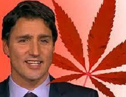 Kanada stimmt für die Legalisierung von Cannabis